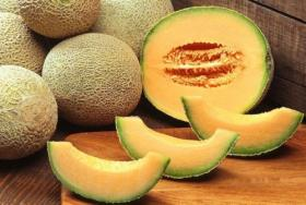 Melon HEARTS OF GOLD